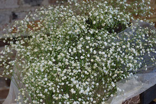 お祝い花束-8の写真2